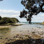 Coffee Bay - Coffee Shack - Campsite View