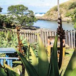 Wild Coast - Coffee Shack - Accommodation