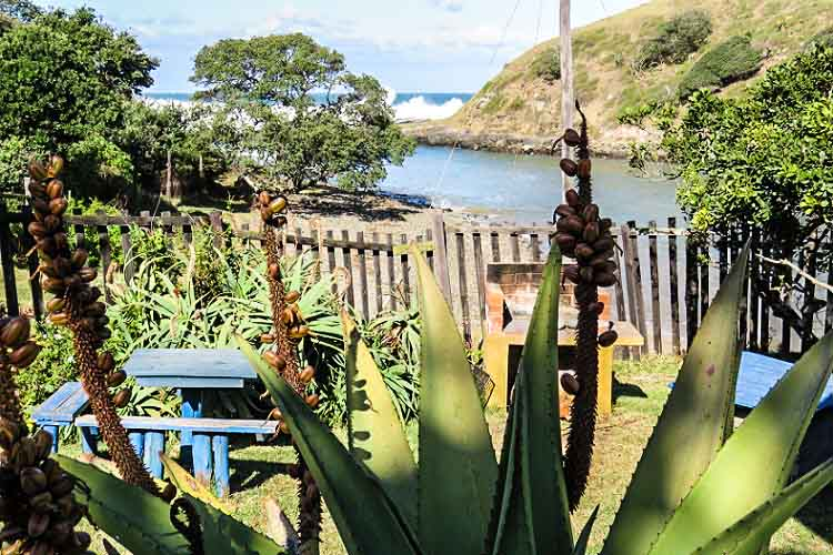 Coffee Bay - Coffee Shack - Accommodation with a View