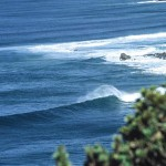 Wild Coast - amazing waves