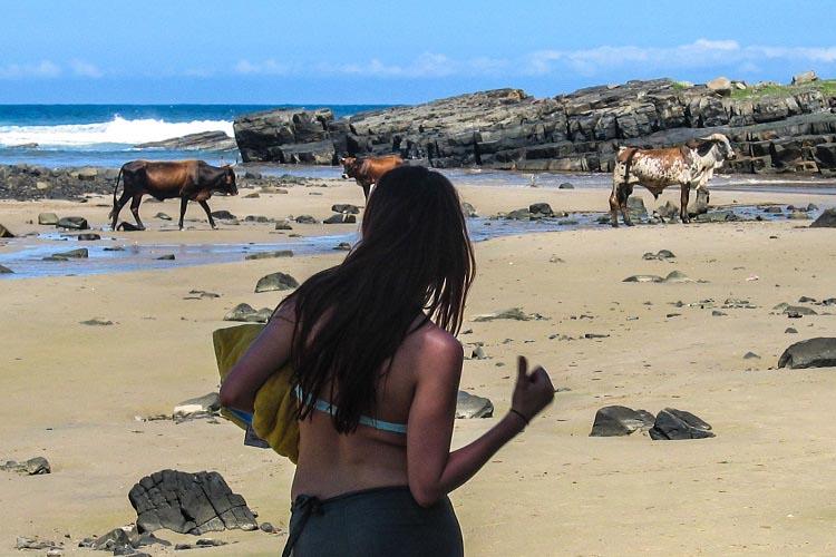 Wild Coast - Transkei - Wild Nature