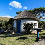 Wild Coast - Coffee Shack - Backpackers - Double